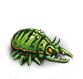 Greater claw bug